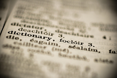"Specific focus on the words ""dictionary"" in an open book with surrounding text blurred."