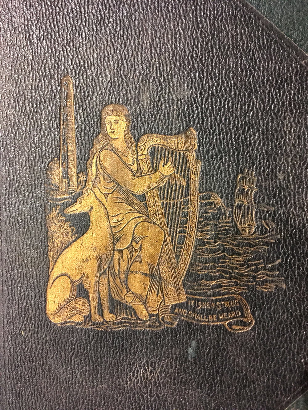Book cover detail showing a harper embossed in gold.