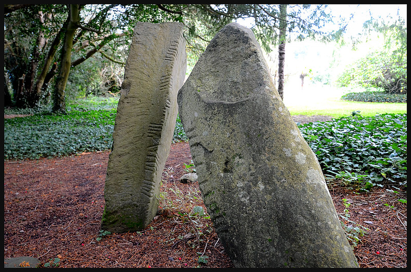 Ogham writing on stones at Adare Manor