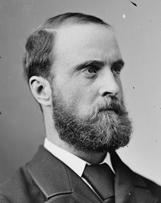 Charles Stewart Parnell, 1870-1880 Library of Congress's Prints and Photographs division under the digital ID cwpbh.03650