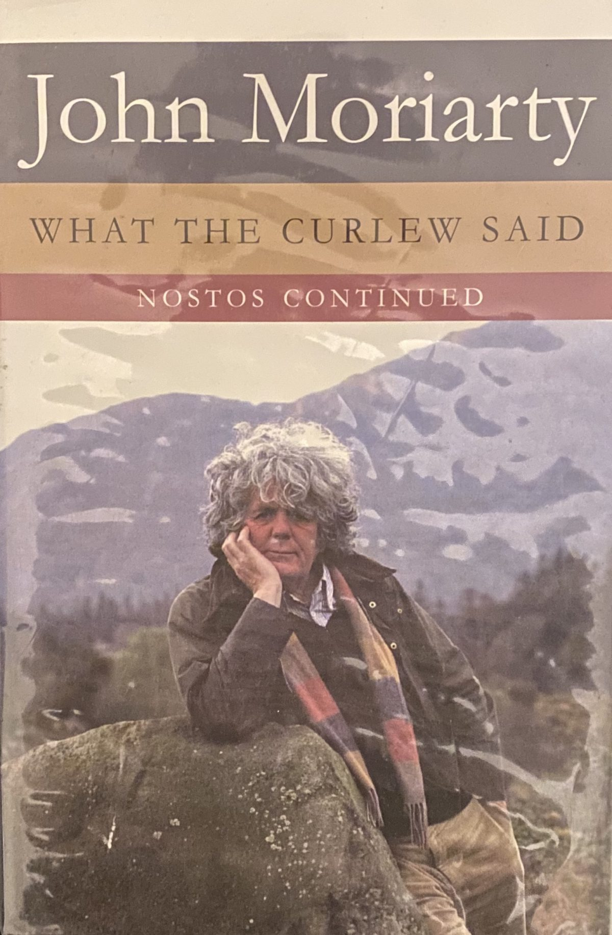 Cover of What The Curlew Says by John Moriarty