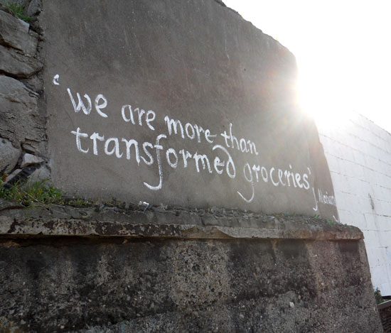 "Writing near the offices of the Lilliput Press, ""We are more than transformed groceries."""