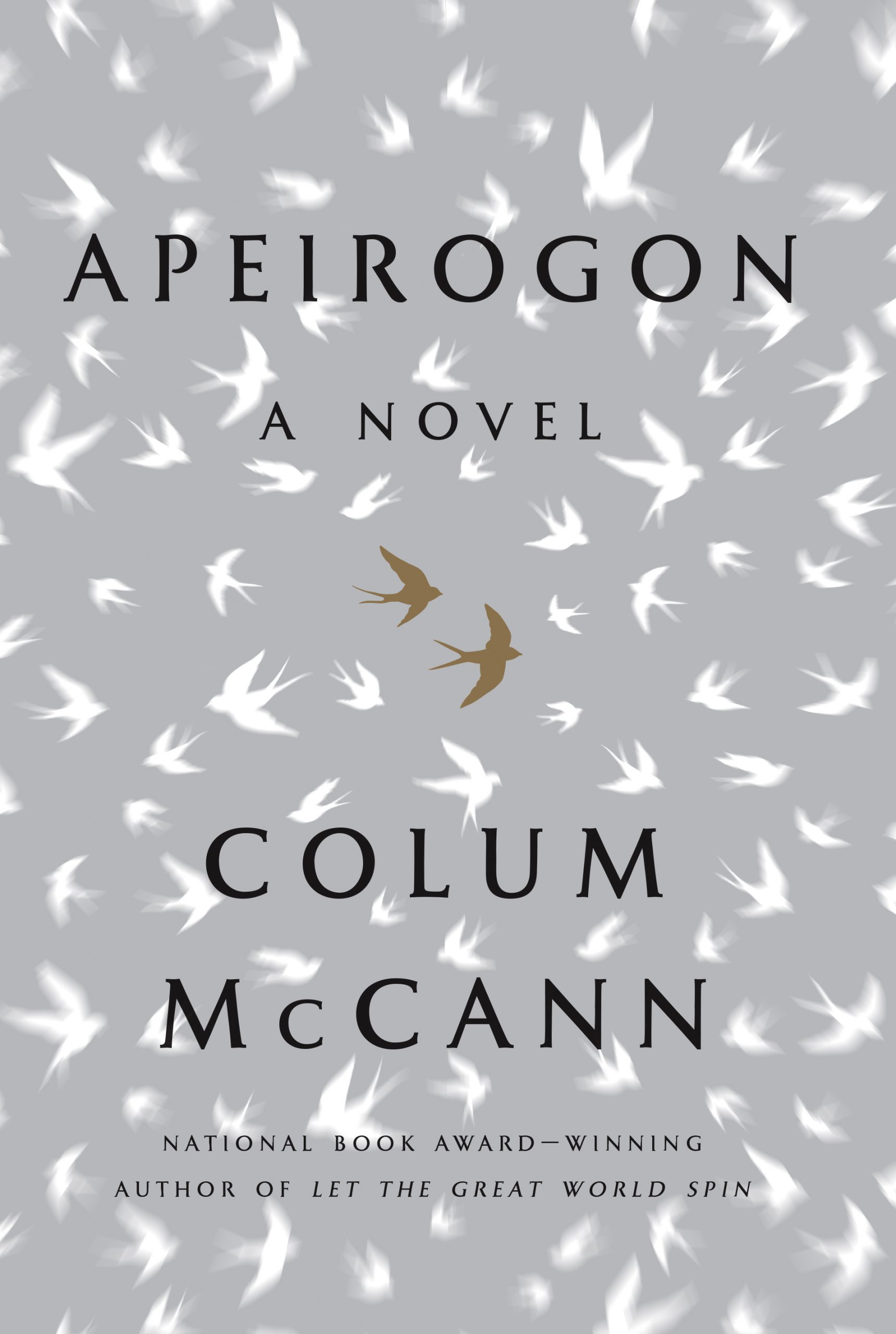 Apeirogon Book Cover, US.