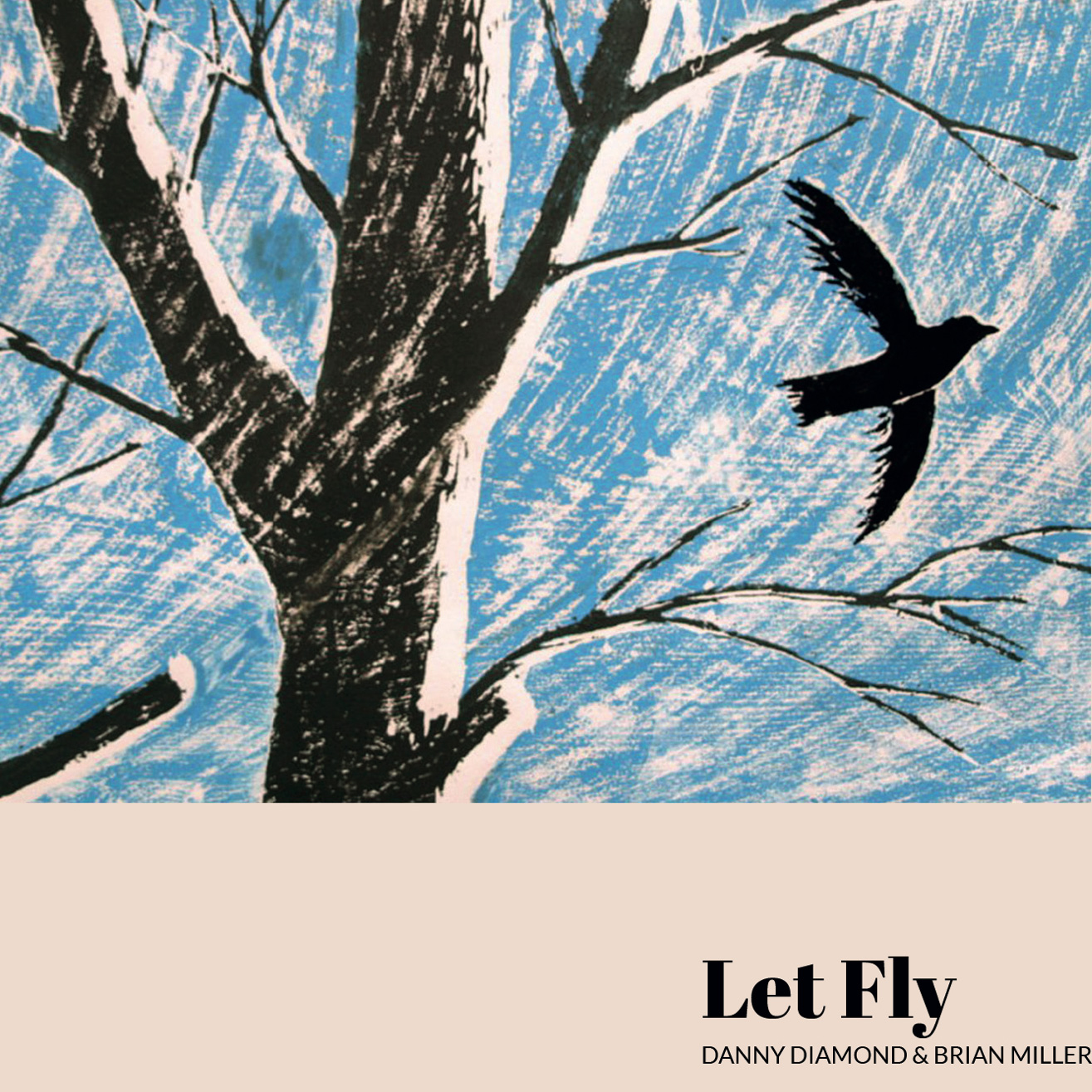 Danny Diamond Brian Miller-Let Fly CD Cover Art